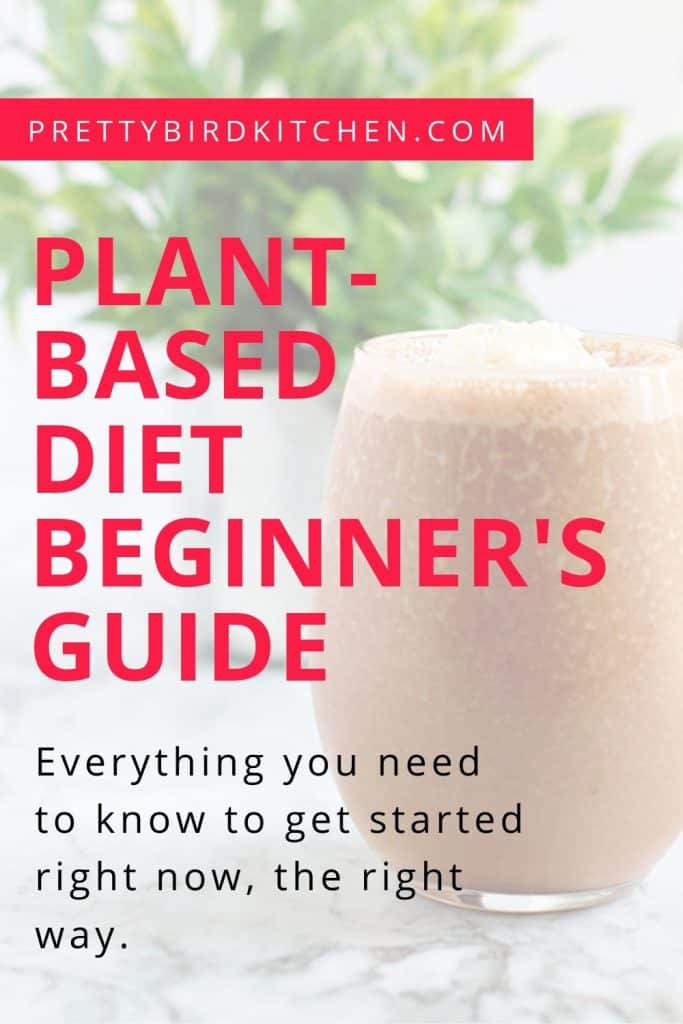 Plant-based diet beginner's guide